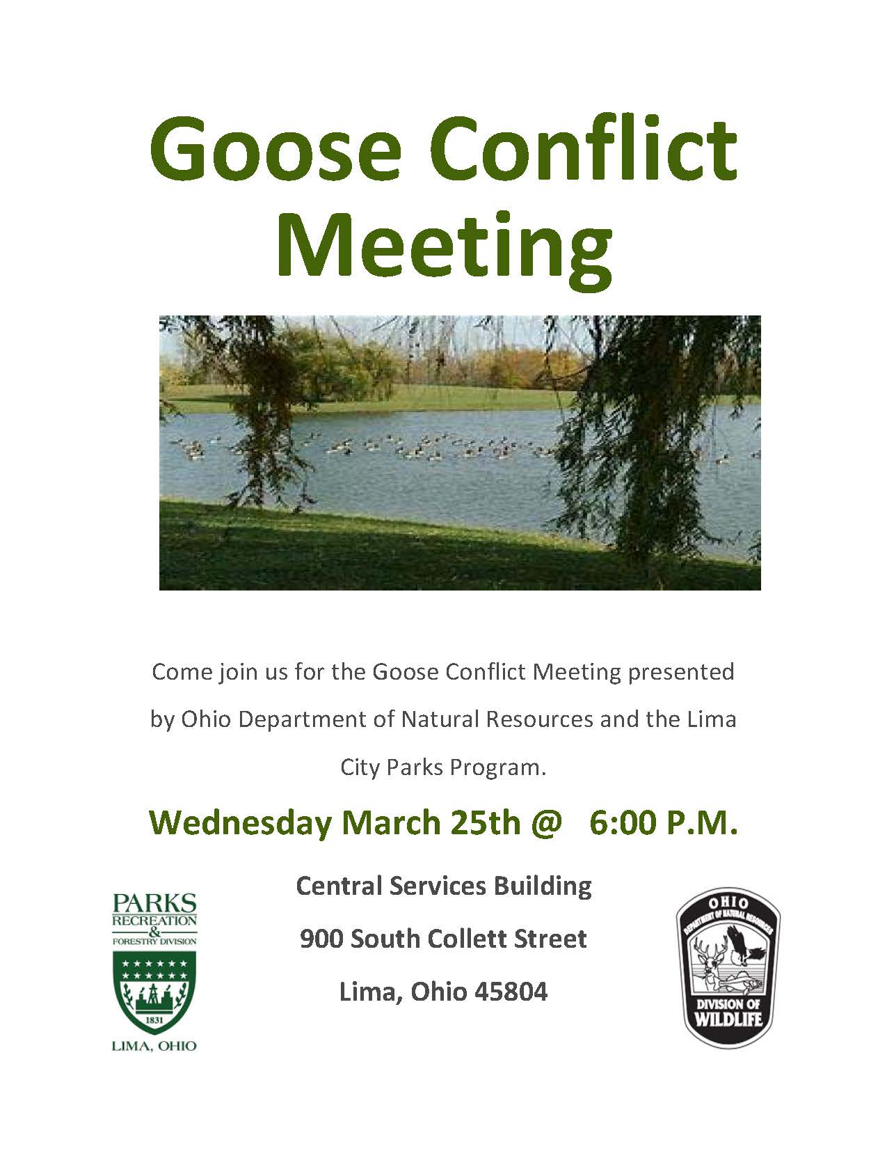 Goose Conflict Meeting